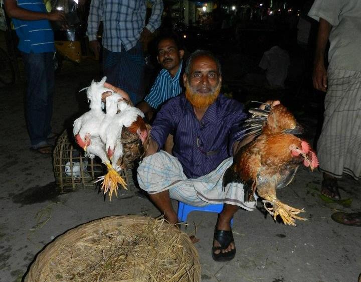 Chicken Dealer Market Bangadesh