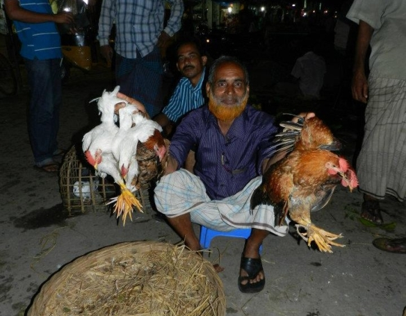 Chicken Dealer Market Bangadesh