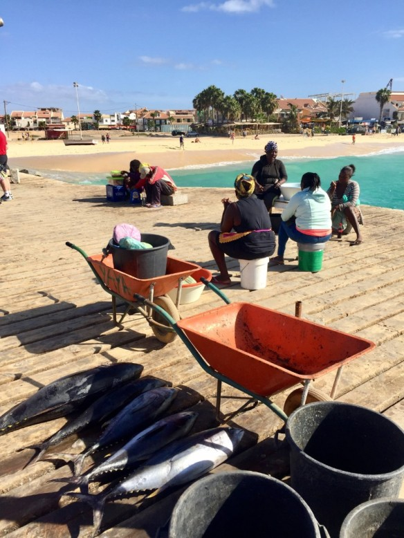 Fisher Sal Cape Verde with the Catch of the day