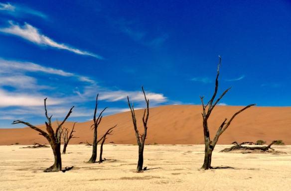 Sossusvlei Namibia Dead Vlei